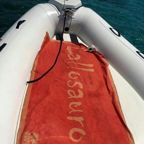 Personalized microfiber towel. Lallosauro boat